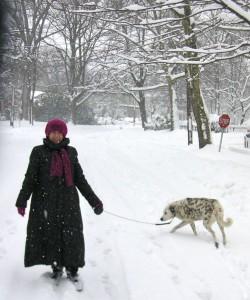 An abundance of snow, and a white dog.
